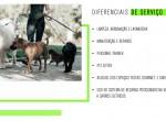 17-julio-bogoricin-lancamentos-highlight
